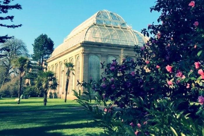 Botanic Gardens – Nicola